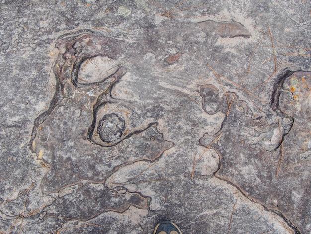 Texture di sfondo di roccia
