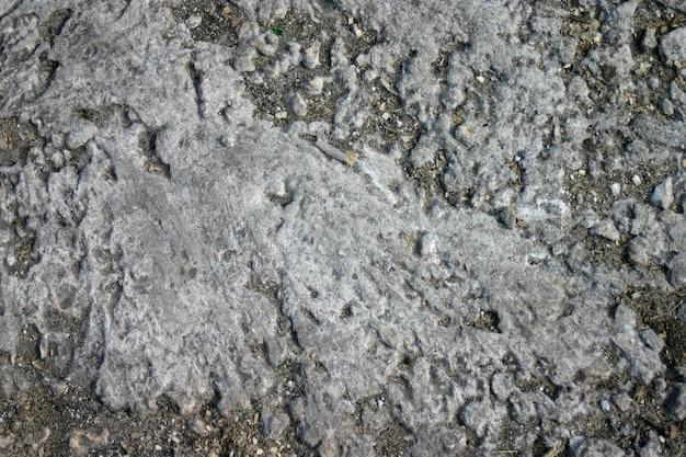 Texture di terra secca e incrinata.