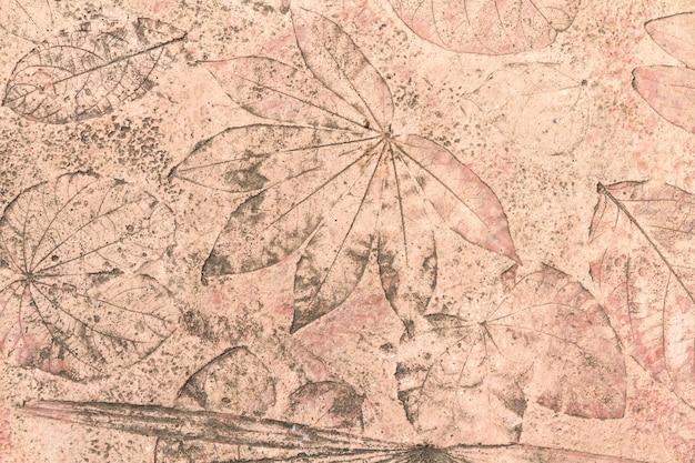 Texture foglia su sfondo concreto