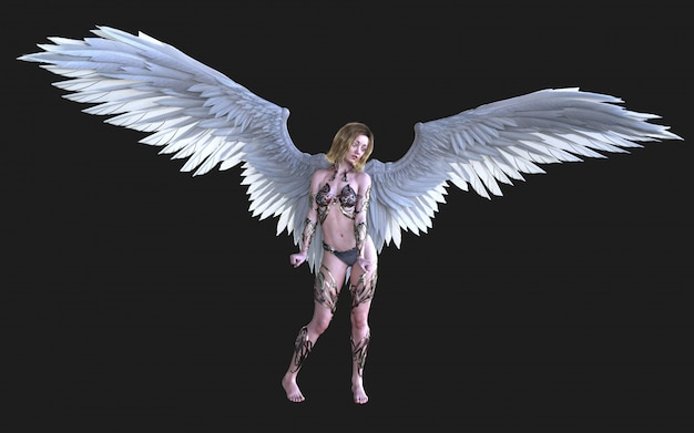 The heaven angel wings, white wing plumage with clipping path.