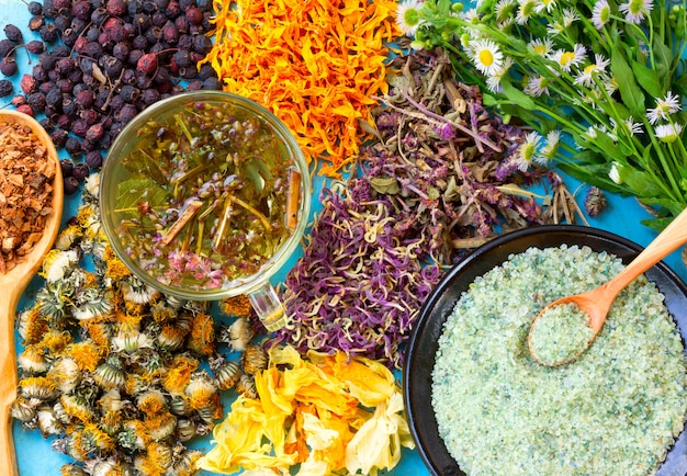 Tisana calda, una serie di fiori secchi e bacche, erbe, corteccia di quercia