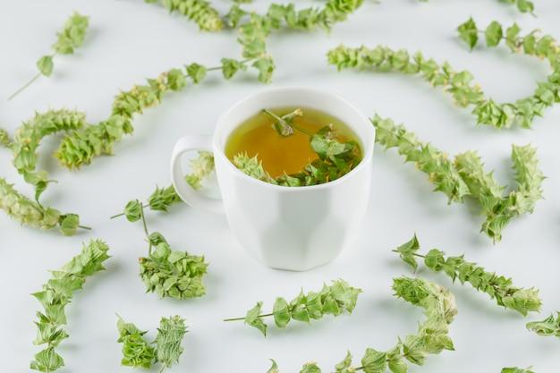 Tisana in una tazza con la vista dell'angolo alto delle foglie su un bianco