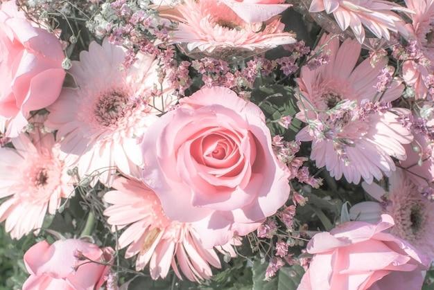 Tonalità pastello personalizzazione rosa e luce bianca naturale.