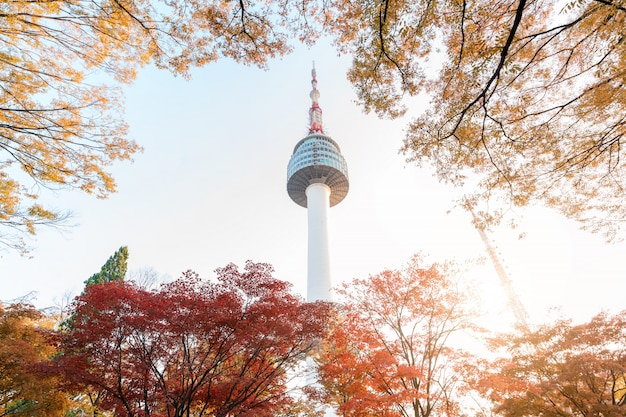 Torre di seoul con le foglie di acero gialle e rosse di autunno alla montagna di namsan in corea del sud.