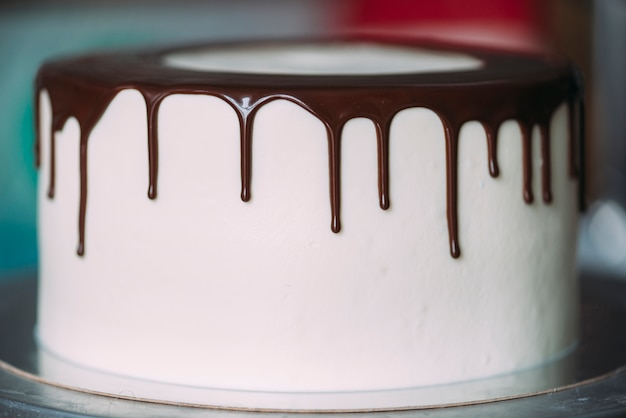 Torta squisita con copertura di cioccolato