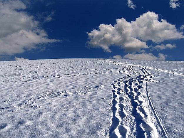 Tracce di neve, montagna, piste forestali