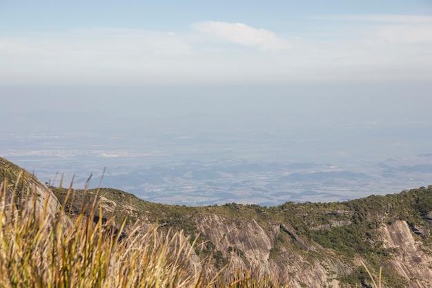 Traccia del seno della donna della zampa visiva in teresópolis