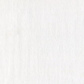 Trama del libro bianco