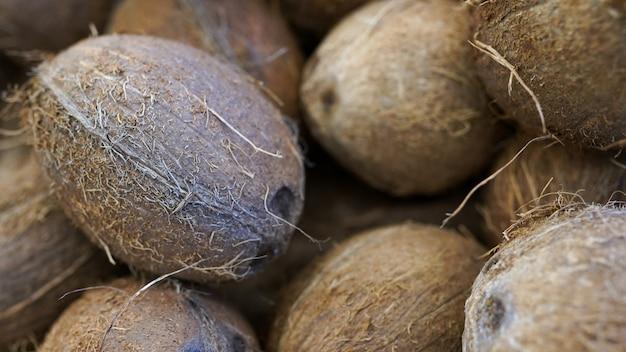 Trama di cocco in fattoria biologica. un sacco o un mucchio di noci di cocco fresche e gustose