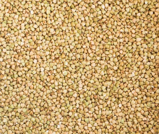Trama di grano saraceno verde secco. sfondo di cibo vegetariano di cereali sani