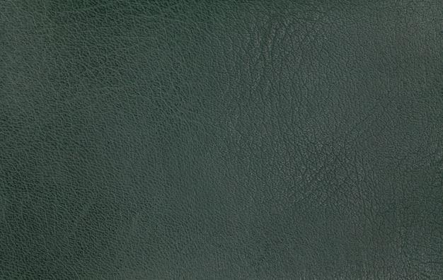 Trama di pelle verde