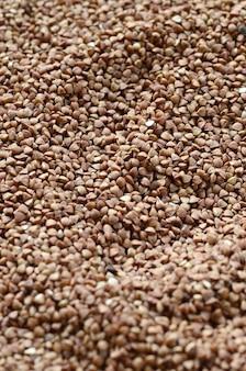 Trama di sfondo di un grande mucchio di grano saraceno