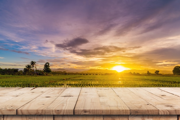 Tramonto del giacimento del riso e tavola di legno vuota per l'esposizione e il montaggio del prodotto.