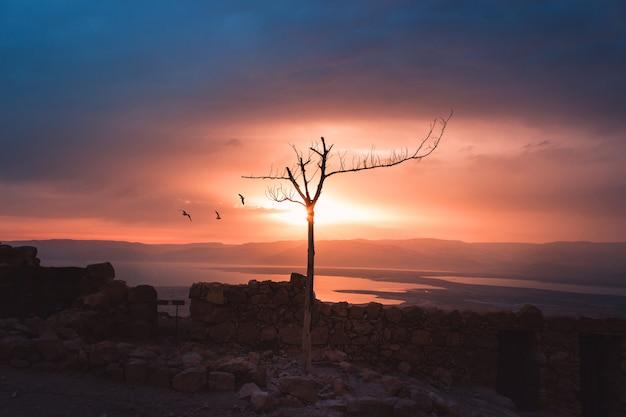 Tramonto di masada, israele