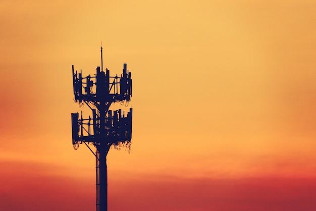 Tramonto e albero alto con antenna cellulare