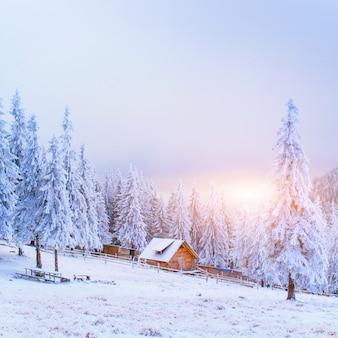 Tramonto in montagna invernale