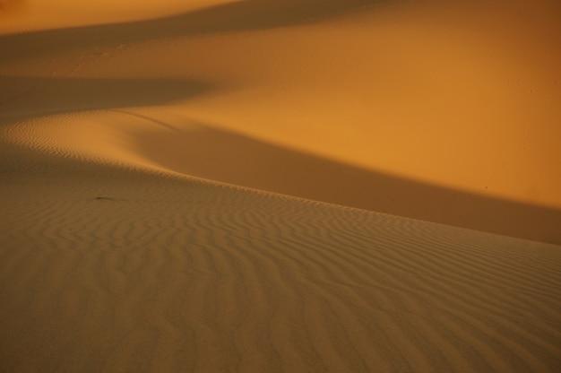 Tramonto nel deserto del sahara