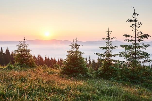 Tramonto nel paesaggio delle montagne. cielo drammatico. carpazi dell'ucraina europa.