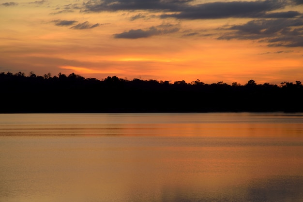 Tramonto nella foresta del fiume su arancione-chiaro