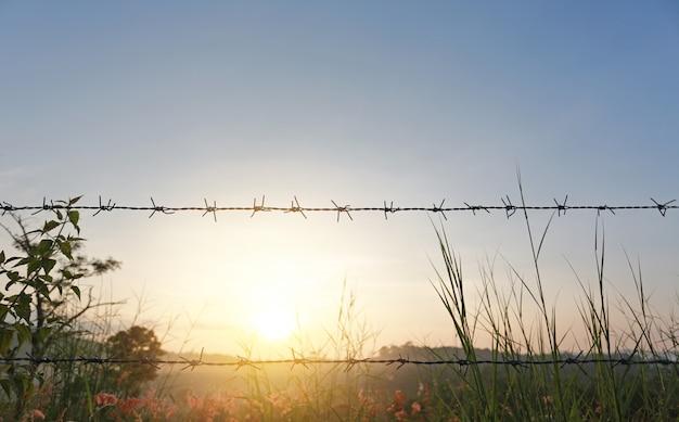 Tramonto sui campi con recinti di filo spinato