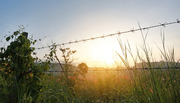 Tramonto sui campi con recinti di filo spinato.