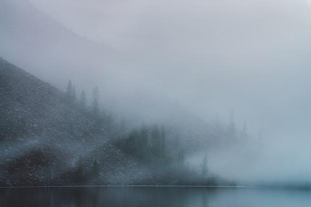 Tranquillo lago di montagna e ripido pendio sassoso con alberi di conifere in una fitta nebbia.