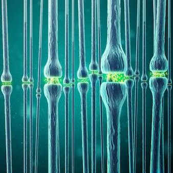 Trasmissione sinaptica, sistema nervoso umano. rendering 3d