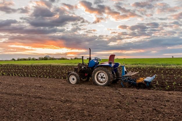 Trattore nel mezzo di un campo al primo piano del paesaggio rurale di tramonto