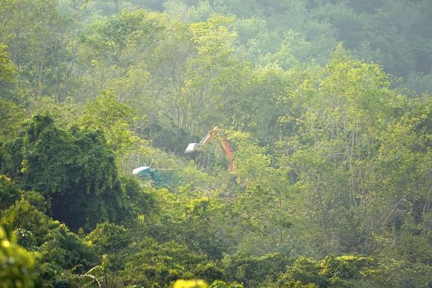 Trattori e taglialegna nella foresta sulla montagna