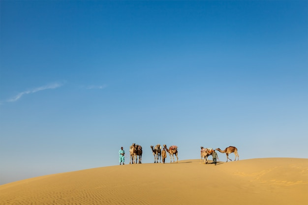 Tre cammellieri (cammellieri) con cammelli tra le dune di thar des