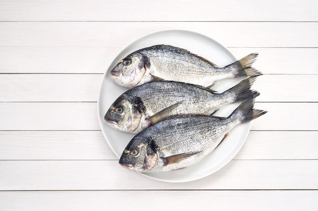 Tre pesci freschi crudi di dorado sul piatto bianco.