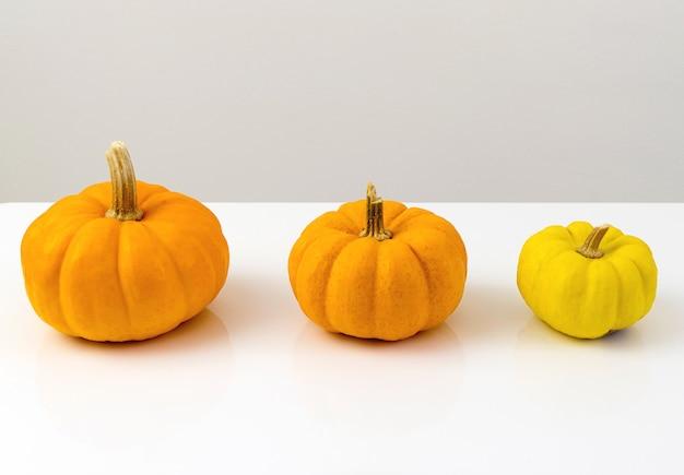 Tre zucche stanno nella fila su bianco.