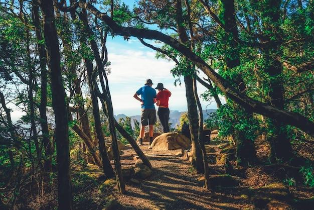 Trekkers che fanno un'escursione nella foresta della tasmania, australia.