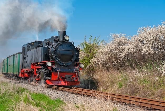 Treno a vapore storico sull'isola di rugen
