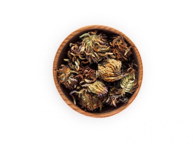 Trifolium o trifoglio asciutti in tazza di legno su bianco