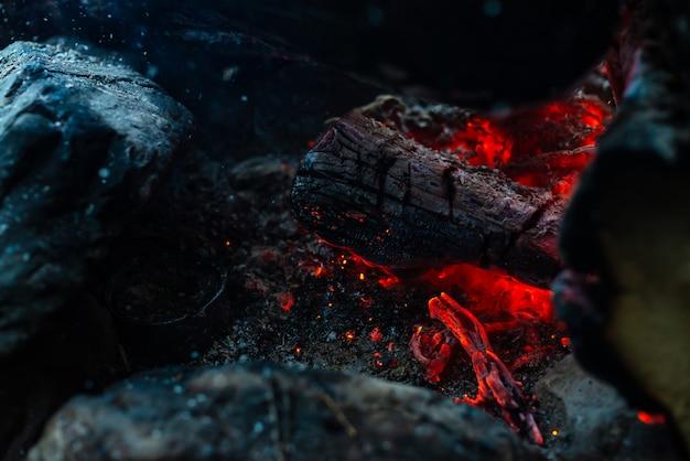 Tronchi fumanti bruciati nel fuoco vivido.