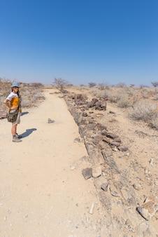 Tronco d'albero pietrificato e mineralizzato. turista nel famoso parco nazionale della foresta pietrificata a khorixas, namibia, africa. bosco di 280 milioni di anni, concetto di cambiamento climatico