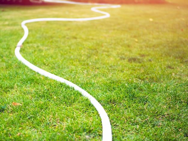 Tubi flessibili bianchi su un prato verde. giorno d'estate.