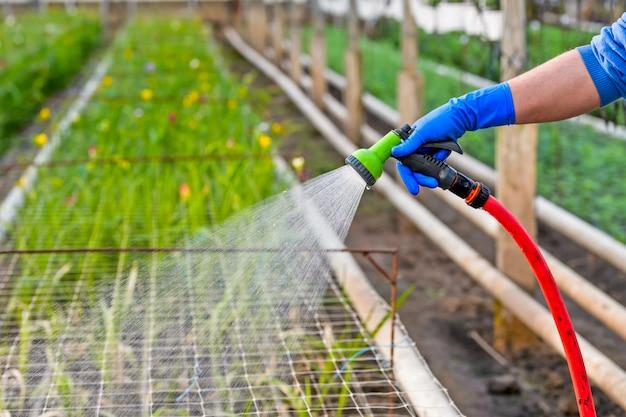 Tubo per irrigazione delle piante