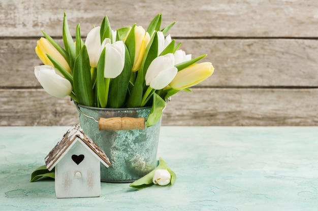 Tulipani, casetta per uccelli su calcestruzzo