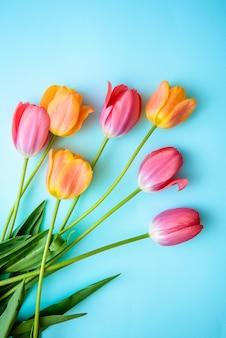 Tulipani delicati sul blu
