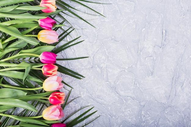Tulipani e foglie di palma in linea