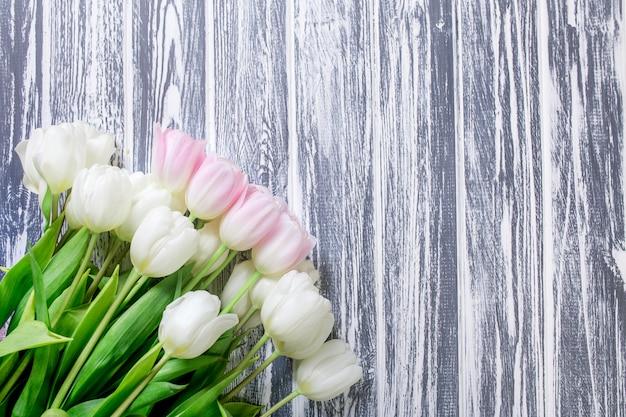Tulipani molto teneri rosa e bianchi su bianco, grey wooden backgrou