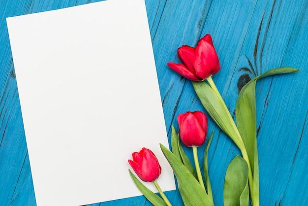 Tulipani rossi su una tavola di legno blu