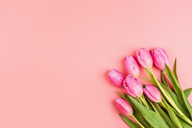 Tulipani su sfondo rosa