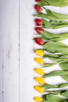 Tulipani sulle assi di legno bianche delle plance