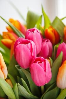 Tulipano. bellissimo bouquet di tulipani. tulipani colorati.