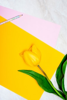 Tulipano giallo, matita e carta colorata su fondo di marmo