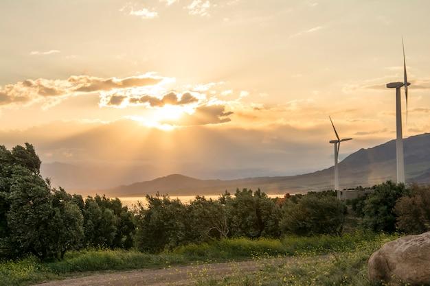 Turbina elettrica del generatore eolico al tramonto