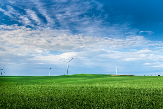 Turbina eolica nel campo.